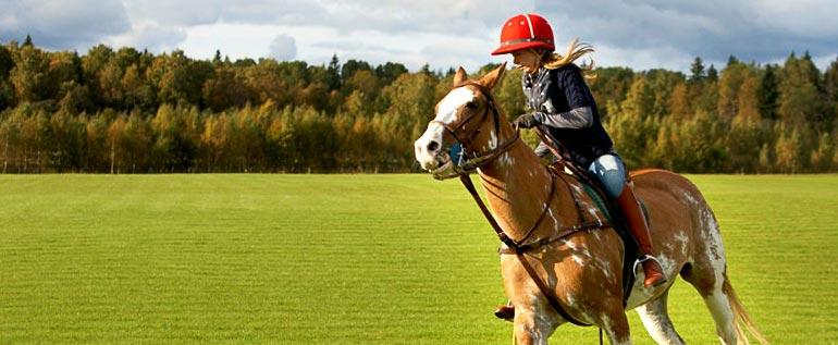 поло конное фото